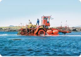 Kelp mower